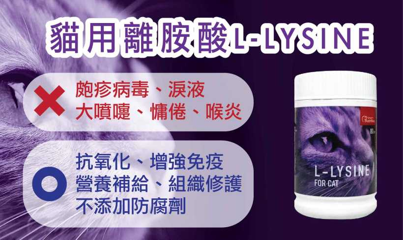 L-Lysine-07